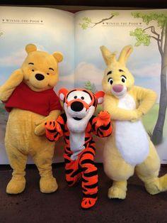 Pooh, Tigger and Rabbit ! Disney Characters Costumes, Disney World Characters, Disney World Magic Kingdom, Disney Fun, Disney Parks, Walt Disney, Disney Magic, Winnie The Pooh Friends, Disney Winnie The Pooh