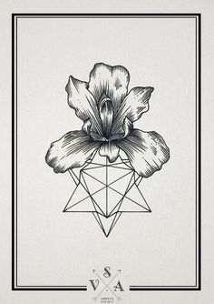 I really like this iris. I like the symmetry cohesion. Sometimes irises drawings can fall apart. This one is tight. Maybe the geometry below guides the drawing??? Cool.