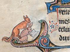 dangers of reading Le livre de Lancelot du Lac& other Arthurian Romances, Northern France 13th century. Beinecke Rare Book & Manuscript Library, MS 229, fol. 133v