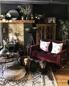 Loved the light in the living room so had to take a quick photo. Penny and Alfie were ready for the shot as always 🤩📷 Thanks for everyone's… Dark Living Rooms, Home Living Room, Living Room Decor, Living Spaces, Living Room Vintage, Cozy Eclectic Living Room, Living Room Inspiration, Interior Inspiration, Casa Art Deco