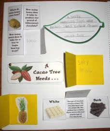 Chocolate Challenge Lapbook - looks like so much fun! We have done this multiples times. Yummy for brains and tummies. School Days, School Stuff, The Chocolate Touch, History Of Chocolate, Lap Books, Hundreds Chart, Unit Studies, Interactive Notebooks, Book Making