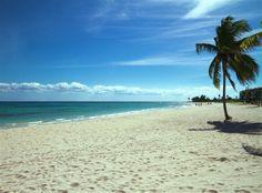 Beach site