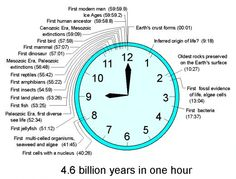 geologic time scale clock - Google Search