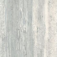 Loon Peak Paulsen L x W Birches Textured Wallpaper Roll Color: Light Gray Barnwood Wallpaper, Vinyl Wallpaper, Textured Wallpaper, Wallpaper Roll, Whitewash Wood, Aging Wood, Coastal Farmhouse, Country Farmhouse, French Country House