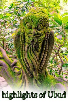 Highlights Of Ubud - Justyna Manjari Relaxing Holidays, Small Waterfall, Bali Travel, Ubud, Vegan Recipes Easy, Trip Advisor, Plant Based, Traveling By Yourself, Highlights