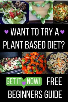 Want to try a plant based diet? Free beginners guide to eating plant based right here! Want to try a plant based diet? Free beginners guide to eating plant based right here! Clean Eating Meal Plan, Healthy Eating Tips, Clean Eating Recipes, Raw Food Recipes, Diet Recipes, Healthy Recipes, Pasta Recipes, Vegan Food, Vegetarian Recipes