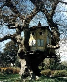 Ivy Clad: A Playhouse... to End all Manufactured Playhouses