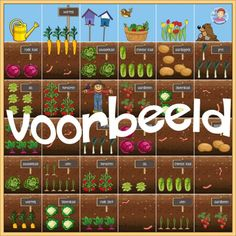 BeeBot mat tuin, lente, moestuin, kleuteridee Computational Thinking, Coding For Kids, Spring Theme, Garden Theme, Elementary Schools, Etsy, Activities, Holiday Decor, Vegetable Gardening