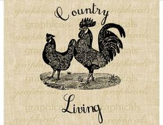 Rooster hen Country Living farm digital download image  for transfer to pillows burlap bags gift tags towels  No. 248 on Etsy, $1.00