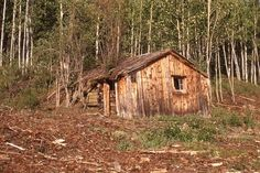 Image of 'abandoned prospector's cabin near Dawson City, Klondike gold rush area, Yukon, Canada'