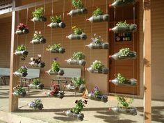 Here's an idea on how to use PET bottles to create a vertical garden.