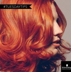 We're sharing this @SchwarzkopfUSA formula after seeing it as one of their #TuesdayTips on Instagram. The color used is Schwarzkopf Professional's heritage color brand IGORA ROYAL, a portfolio of permanent color with over 120 intermixable shades to choose from. FORMULA: Base: IGORA ROYAL 25 g 7-57 + 5g 8-55 with IGORA ROYAL Oil Developer 6% (20vol.)