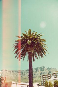 Summer 2014, Cape Town.