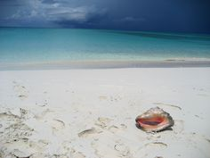Turks and Caicos honeymoon Romantic Honeymoon, Honeymoon Ideas, Turks And Caicos Honeymoon, Happily Ever After, Dream Wedding, Relax, Happiness, Ocean, Spaces