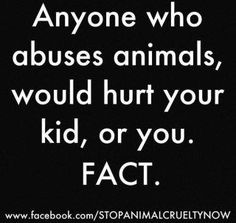 Maybe this fact will let the abuse of animals bother you, since the pain and suffering of them doesn't seem to. Animal abusers hurt PEOPLE too! -- My Grandmother used to say that anyone who abused animals would abuse women and children too... This verifies what I grew up learning!!!