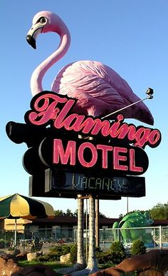 Daily dose of eye-candy. The fabulous Flamingo Motel neon sign. First stop on my next vacation. Trashy never looked so classy. Brandon Flowers, Station Essence, Vintage Neon Signs, Whatsapp Wallpaper, Wisconsin Dells, Lake Michigan, Roadside Attractions, Roadside Signs, Pink Bird
