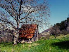 A beautiful old cottage near Bad Überkingen in Germany