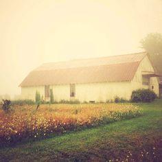 Rustic Barn . rural . modern farmhouse decor . fog by joystclaire