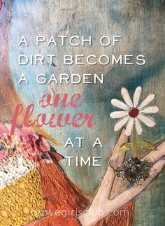 A patch of dirt becomes a garden one flower at a time...