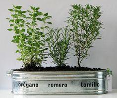 A good ideia for herbs. Eco Garden, Garden Deco, Natural Garden, Garden Boxes, Diy Planters, Planter Pots, Herb Wall, Vegetable Garden Planning, Aromatic Herbs