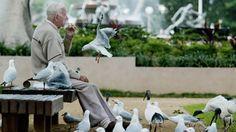 La soledad en las personas de la tercera edad de Canadá es epidémica, dice psicólogo