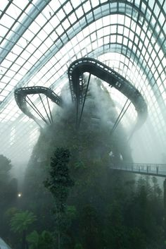 Cooled Conservatories, Gardens by the Bay, Singapore | Wilkinson Eyre; Photo: Craig Sheppard | Bustler