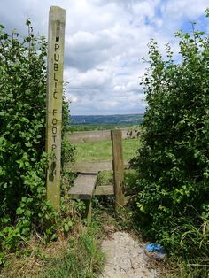 view from Somerset Cider Farm, public foot path and fence stile Somerset Cider, Farm Gate, Somerset England, Team Gb, Sense Of Place, Travel England, Stone Walls, English Countryside, Urban Landscape