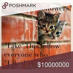 Like, follow, share!!💗 Like Nasty Gal Swim Coverups