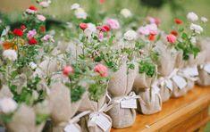 muda de plantas para os convidados do casamento
