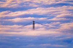 Lions_Gate_Bridge_Enveloped_In_Fog__Vancouver__British_Columbia_Canada.jpg (2000×1333)