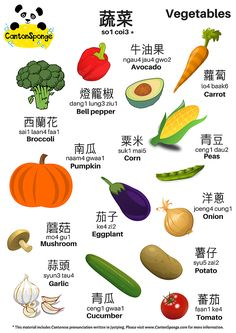 Bilingual (English - Chinese) Vegetables Themed Poster with clear Jyu. Cantonese Language, Chinese Language, Korean Language, Spanish Language, French Language, Sign Language, Mandarin Lessons, Learn Mandarin, Chinese Phrases