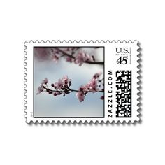 Cherry Blossom and Sky spring postage