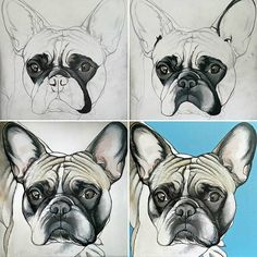 Birth of a painting , French Bulldog , Frenchie. by The Dog Painter , Jeroen Teunen French Bulldog Cartoon, French Bulldog Drawing, Dog Signs, Sketch Painting, Dog Paintings, New Puppy, Dog Portraits, Happy Dogs, Dog Art