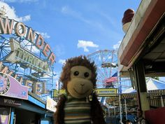 I think someone recognized Pepe at Coney Island...we hightailed it out of there just in case the Paparazzi got wind of his exploits! #Pepe
