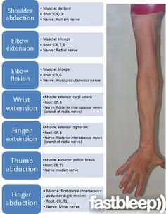 Upper Limb Examination - Neurology | Fastbleep