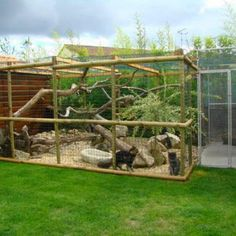 Cats Toys Ideas - Image … - Ideal toys for small cats Cool Cats, Cage Chat, Outdoor Cat Run, Cat Habitat, Outdoor Cat Enclosure, Reptile Enclosure, Cat Cages, Ideal Toys, Cat Playground