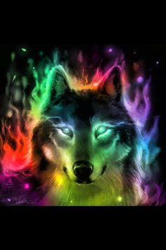 wolfawesome colorful