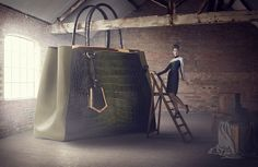 The Big Bag Theory by Lucia Giacani