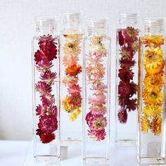 「植物標本集」という意味を持つハーバリウムが、美しさが長持ちするお花として注目されています。切り花とも鉢植えとも違うハーバリウムは、新しいお花の楽しみ方です♪ Leaf Crafts, Diy Crafts, Sensory Bottles, Spa Design, Hippie Art, Plant In Glass, My Flower, Flower Power, Dried Flowers