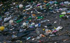 Corporate giants vow to curb ocean-clogging plastic packaging waste