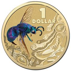2014  $1 Bright Bugs Blow Fly Colour Printed Frosted Unc Coin on Card of Issu.