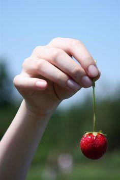"""Strawberry Picking"""