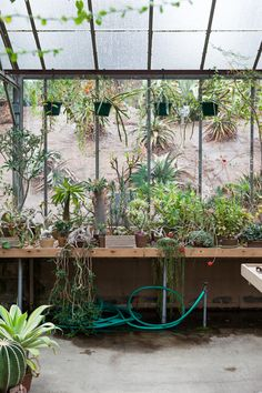 greenhouse idea: pipe legs & wood slats tables