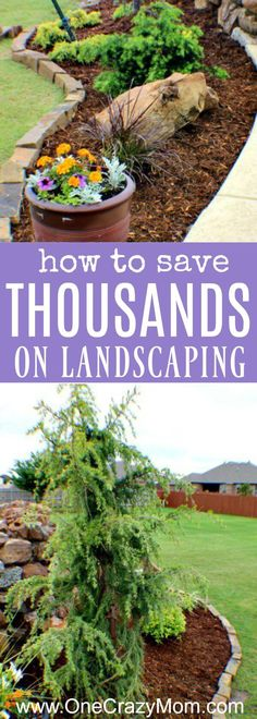 Use these money saving landscaping tips to save big on landscaping