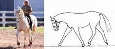 A horse in balance, left, and at right, the outline of a photo of a horse heavily loaded on the forehand.