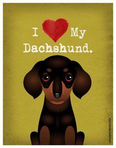 I Love My Dachshund I Heart My Dachshund I door DogsIncorporated