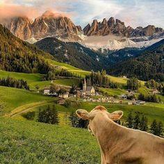 Photo: Val de funes , Dolomites , Italy