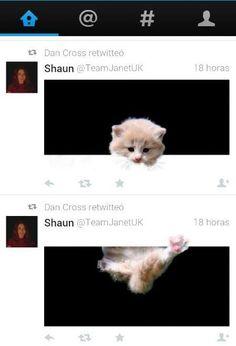 El nou format de twitter, permet accions súper creatives,...