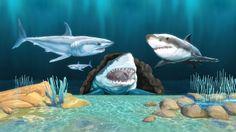 Shark Wall Stickers