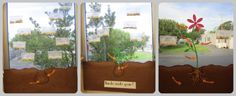 Growing Plants with Kids, activities, in classroom Plant Science, Science Biology, Life Science, Growing Seeds, Growing Plants, Growing Vegetables, Poisonous Plants, Edible Plants, Classroom Projects